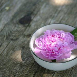peonía en un cuenco sobre una mesa de madera